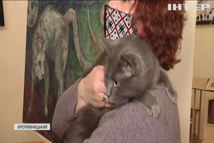 """В музеї Кропивницького влаштували флешмоб """"Весняний кіт"""""""