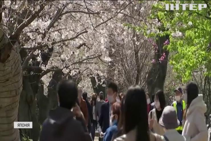 Японці виходять у парки милуватися сакурою