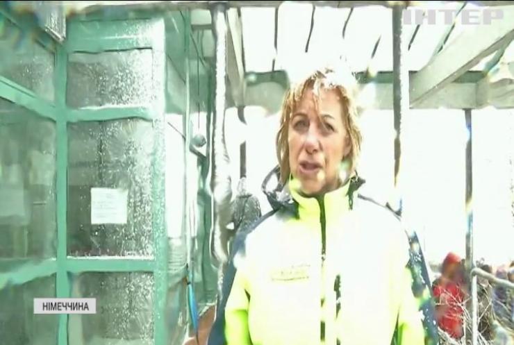 Погодні аномалії: Європу накрив небачений снігопад
