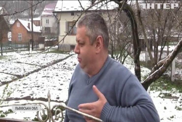 Погода в Україні: коли прийде справжня весна