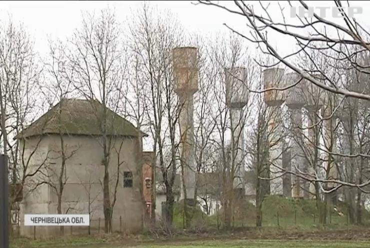На Буковині зафіксували спалах чуми свиней