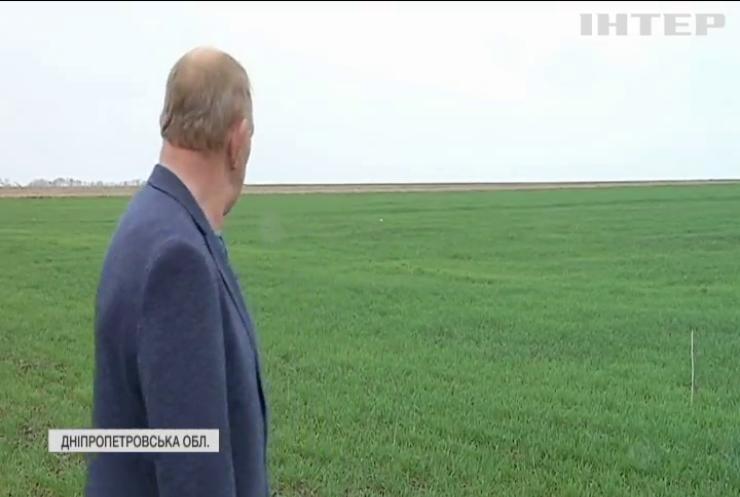 Бюрократія залишила фермерів Дніпропетровщини без землі