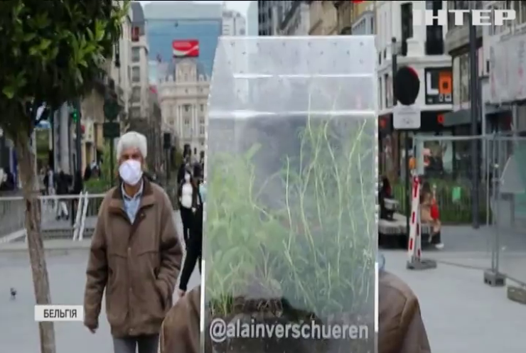 Митець із Брюсселя винайшов мінітеплицю для вулиці