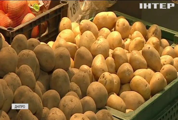 В Україні дорожчають овочі: у чому причина?