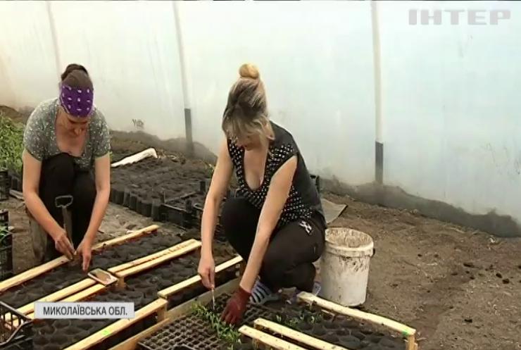 На Миколаївщині ветерани об'єдналися у фермерський кооператив