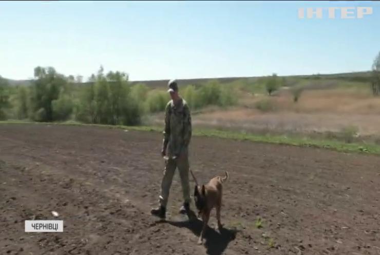 Жителька Чернівців закопала власну новонароджену дитину