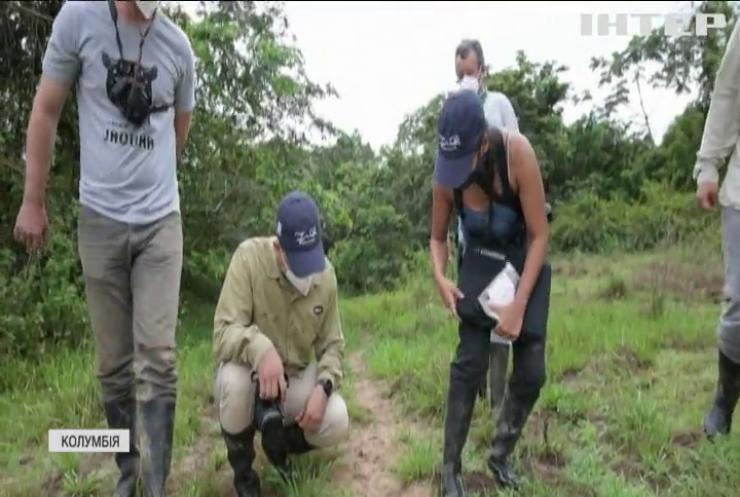 Колумбієць перетворив свої землі на заповідник для ягуарів