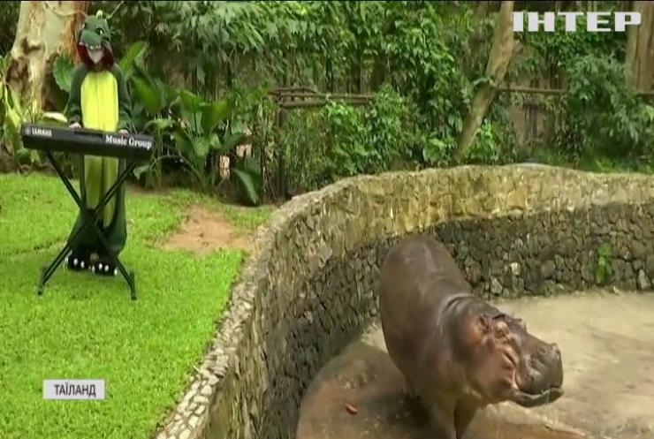 Тайці музикою рятують тварин із зоопарку від ковідної нудьги