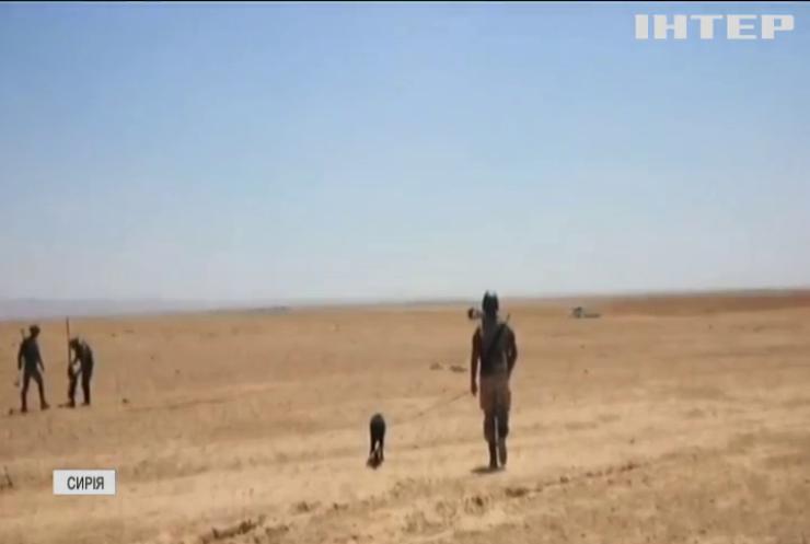 Військові Туреччини виявили авто з вибухівкою у Сирії