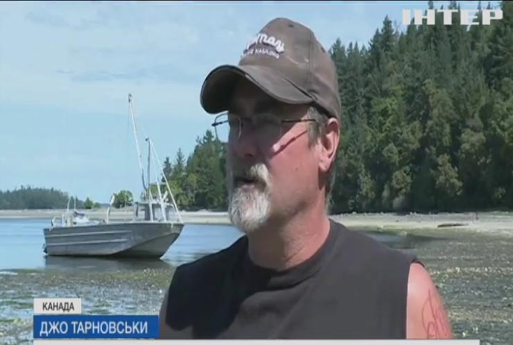 Аномальна спека знищила врожай устриць у Канаді