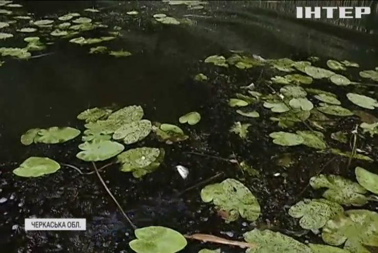 На Черкащині у річці Рось масово гине риба