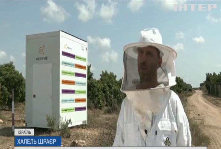 В Ізраїлі відновлюють популяцію бджіл за допомогою вуликів-роботів