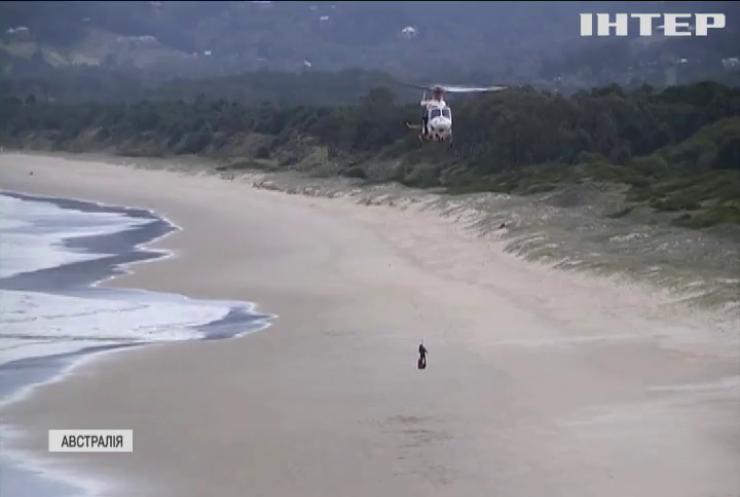 Австралійські пляжі закрили через напад акули
