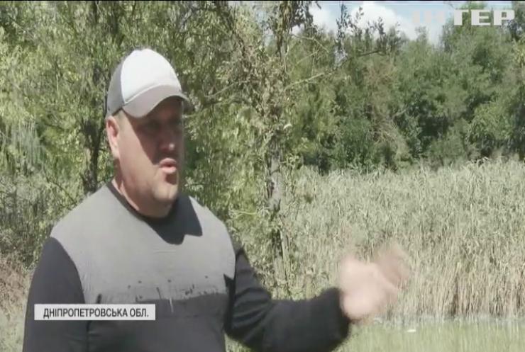 На Дніпропетровщині у водоймах гине риба через нечистоти