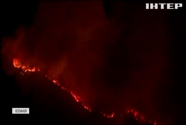 Лісові пожежі в Іспанії: вигоріло понад сім тисяч гектарів