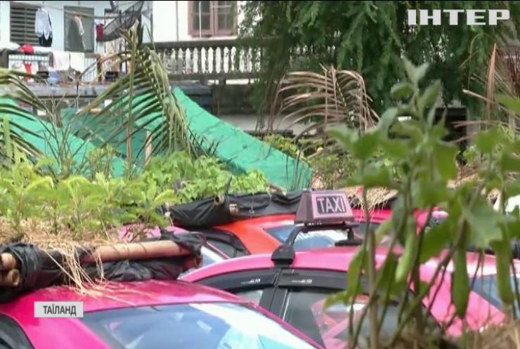 В Таїланді замість автопарку створили міні-ферму