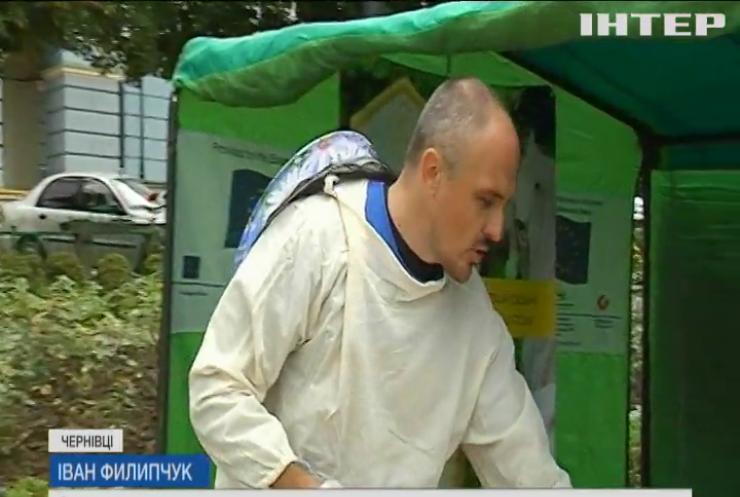 У Чернівцях провели фестиваль меду і  трав'яного чаю