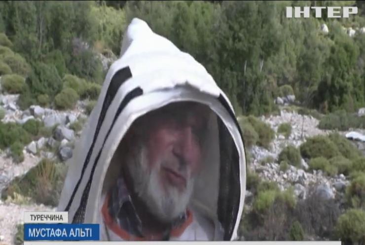 Світові запаси соснового меду під загрозою через пожежі у Туреччині