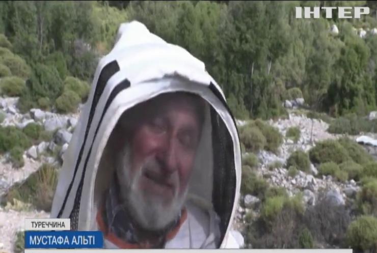 Масштабні лісові пожежі у Тереччині спричинили дефіцит меду