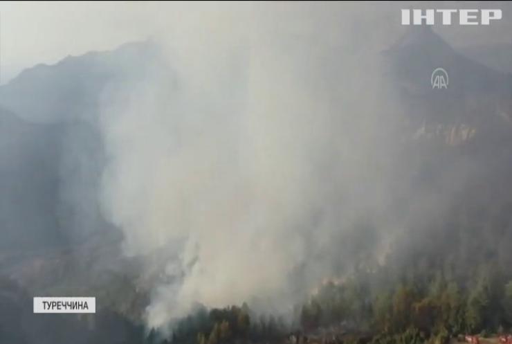 У Туреччині знову горять ліси: пожежа виникла через блискавку
