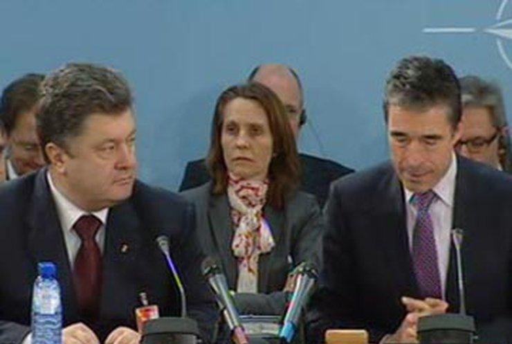 НАТО хвалит Украину за борьбу с терроризмом