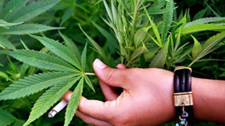 Марихуана от склероза марихуана герои кокаин