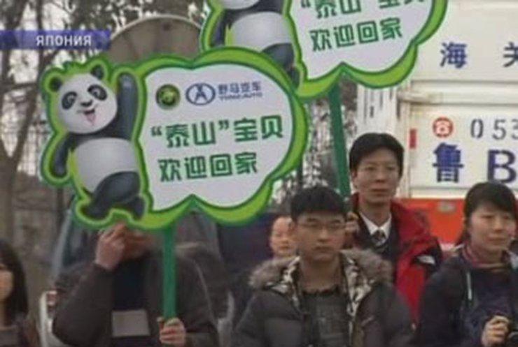 Токио и Пекин начинают выяснять отношения