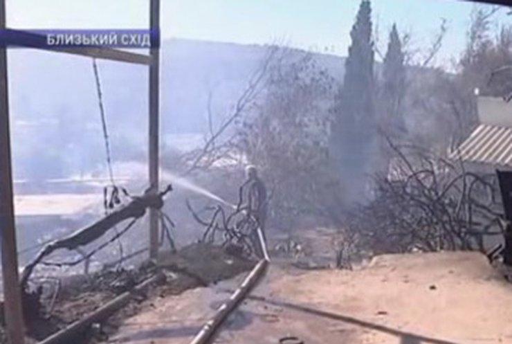 В Израиле взяли под контроль лесные пожары