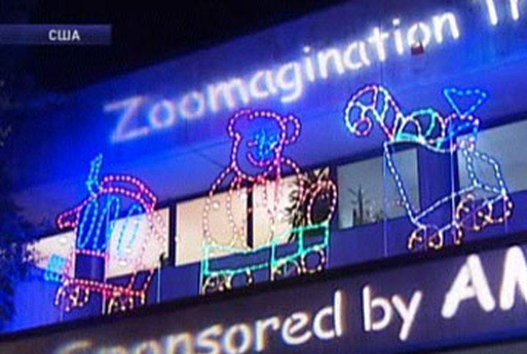 Вашингтонский зоопарк устроил день открытых дверей