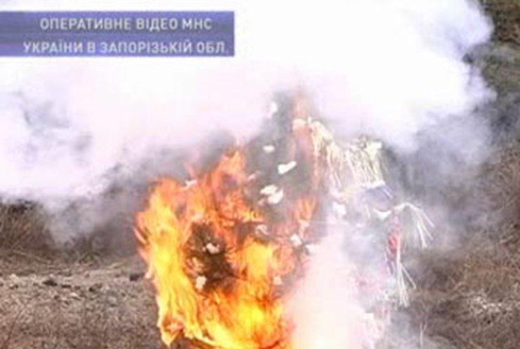 Запорожские спасатели показали как ёлка превращается в зажигалку