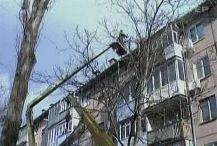 В Кировограде на жилой дом упал тополь