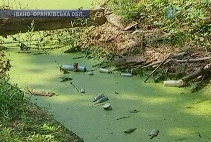 Жители прикарпатского города Тисменица страдают от захороненных в земле отходов