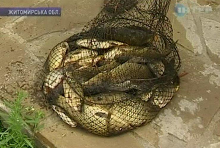 В Житомирской области проходят соревнования по рыболовле