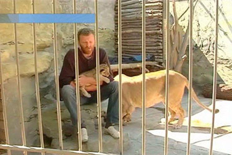 Украинец пять недель просидел в вольере с львицей
