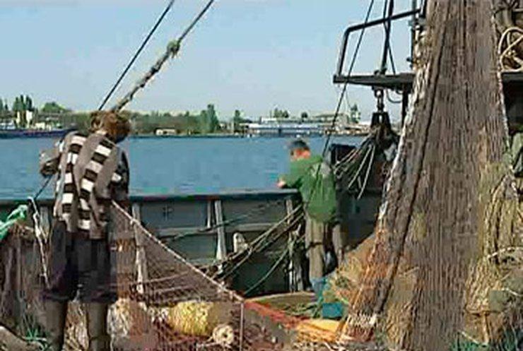 Под видом научных исследований в Украине уничтожаются запасы рыбы