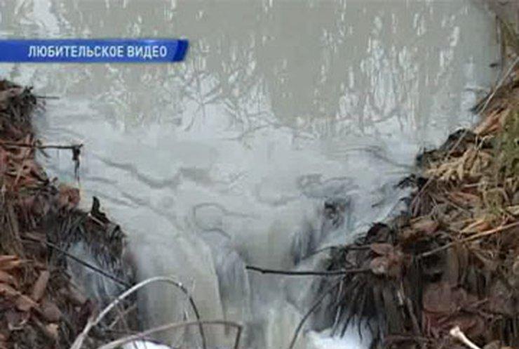 В Житомирской области намечается экологическая катастрофа