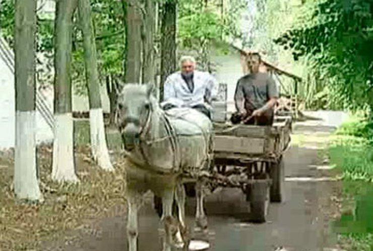 На Черкащине лошадка Марьяна заменяет машину скорой помощи