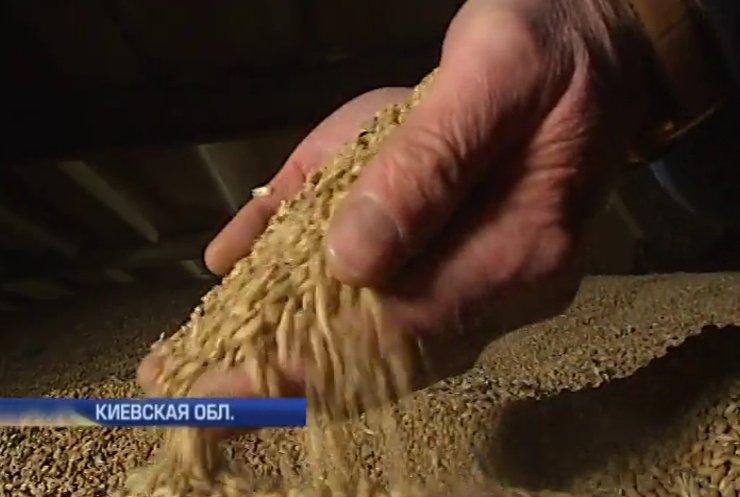 Фермеры экономят на посевной, но Украину без хлеба не оставят