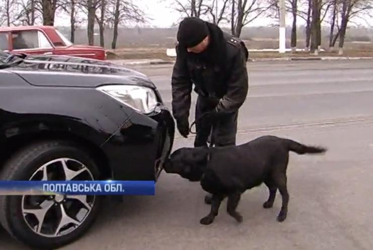 На дорогах Полтавщини собаки шукають зброю