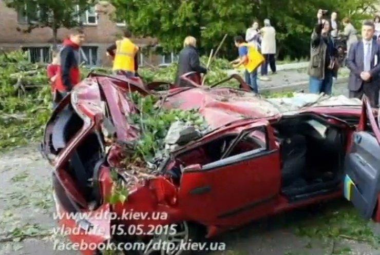 У Києві дерево смертельно травмувало 5-річну дівчинку