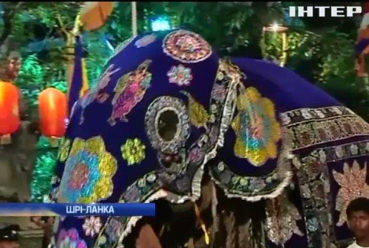 На Шрі-Ланці проходить парад з музикантами та слонами