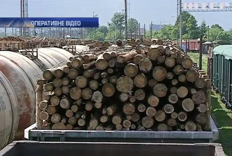 До Румунії намагались вивезти 200 вагонів контрабандного лісу