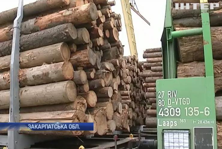 На Закарпатті застрягли 182 вагони із деревиною