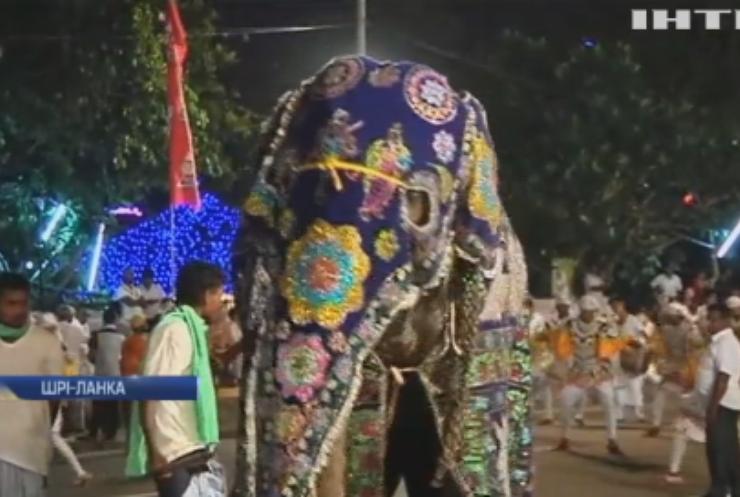 В Шрі-Ланці пройшов парад зі слонами та музикантами
