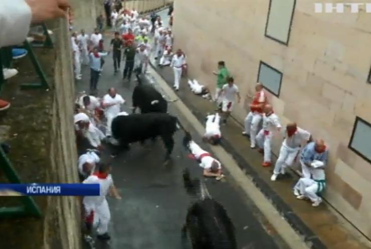 """В Испании на """"забеге быков"""" пострадали 5 человек"""