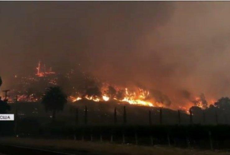 Пожежі у Каліфорнії: площа займання побила всі рекорди