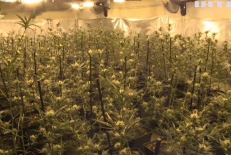 У Мексиці схвалили законопроєкт про легалізацію марихуани