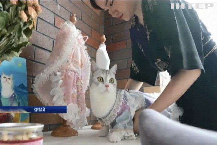 Дизайнерка з Китаю створює вишукане вбрання для котів