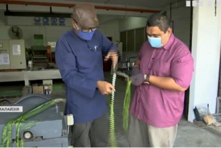 У Малазії збудували безпілотник із листя