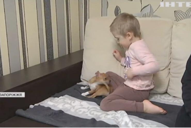 На Запоріжжі чотирирічна Ксенія потребує допомоги